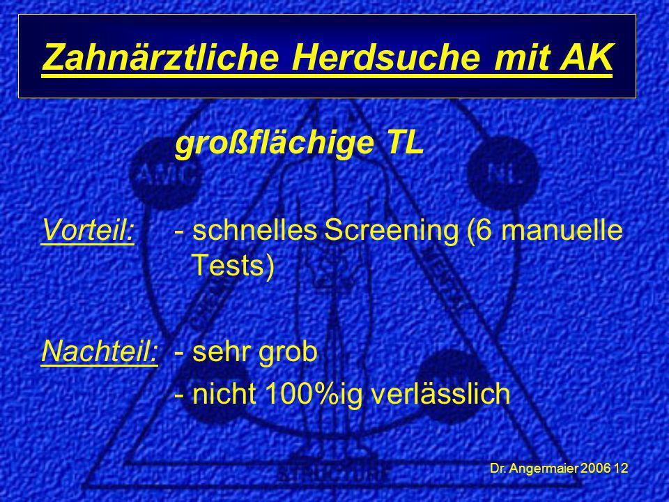 Dr. Angermaier 2006 12 großflächige TL Vorteil: - schnelles Screening (6 manuelle Tests) Nachteil:- sehr grob - nicht 100%ig verlässlich Zahnärztliche
