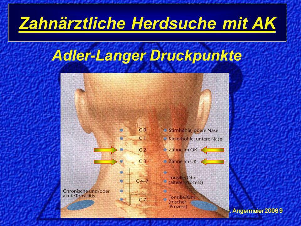 Dr.Angermaier 2006 20 Warum ist Herdsuche so wichtig.