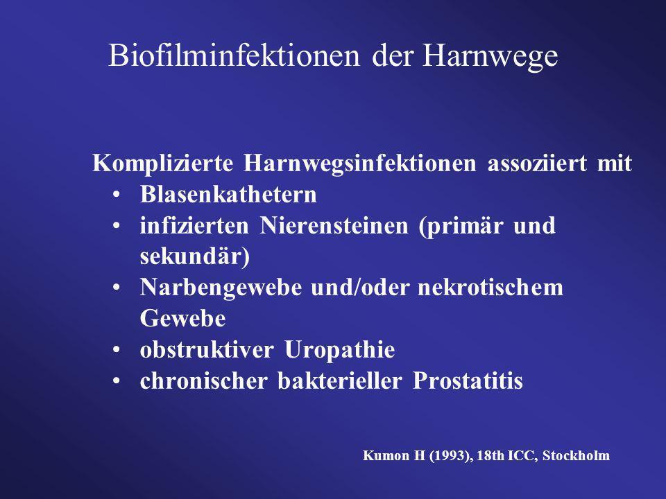 Komplizierte Harnwegsinfektionen assoziiert mit Blasenkathetern infizierten Nierensteinen (primär und sekundär) Narbengewebe und/oder nekrotischem Gew