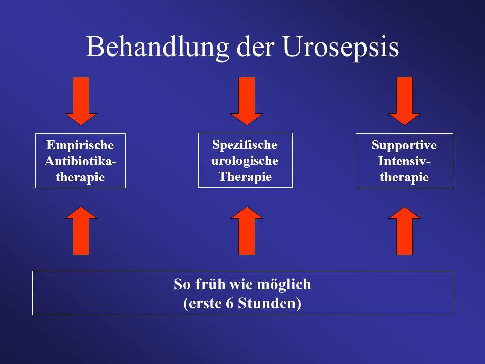 So früh wie möglich (erste 6 Stunden) Supportive Intensiv- therapie Empirische Antibiotika- therapie Spezifische urologische Therapie Behandlung der U