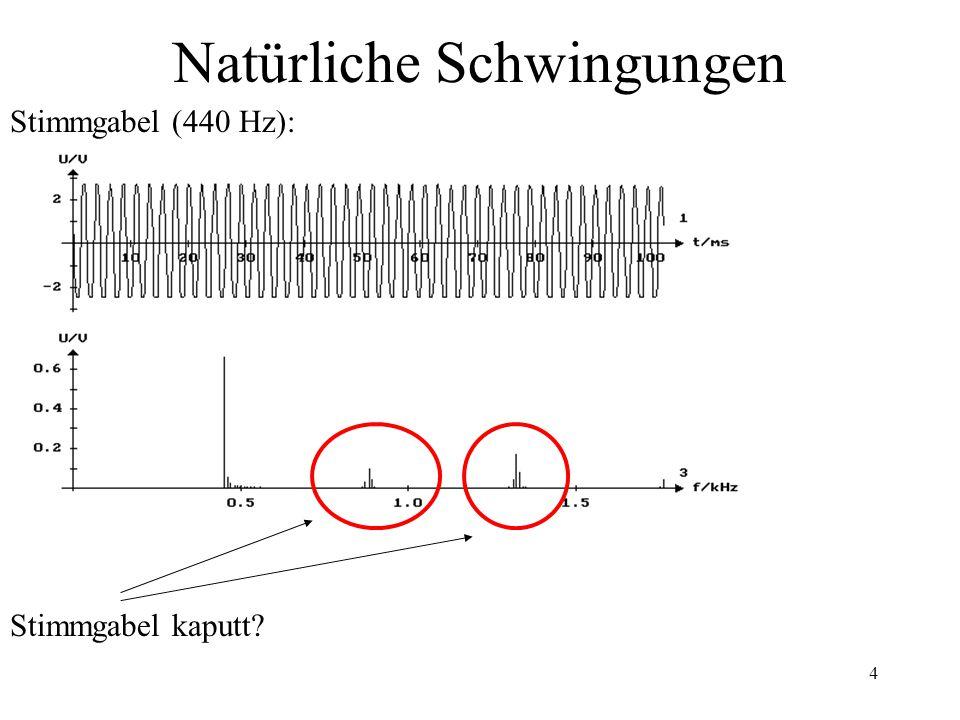 4 Natürliche Schwingungen Stimmgabel (440 Hz): Stimmgabel kaputt?