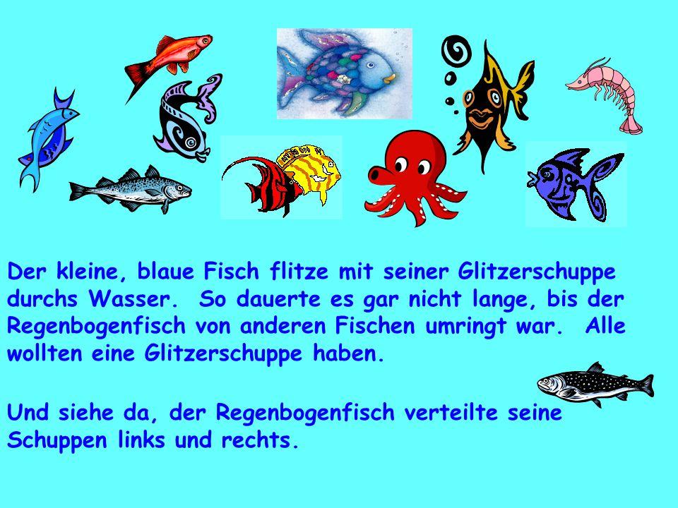 Der kleine, blaue Fisch flitze mit seiner Glitzerschuppe durchs Wasser. So dauerte es gar nicht lange, bis der Regenbogenfisch von anderen Fischen umr