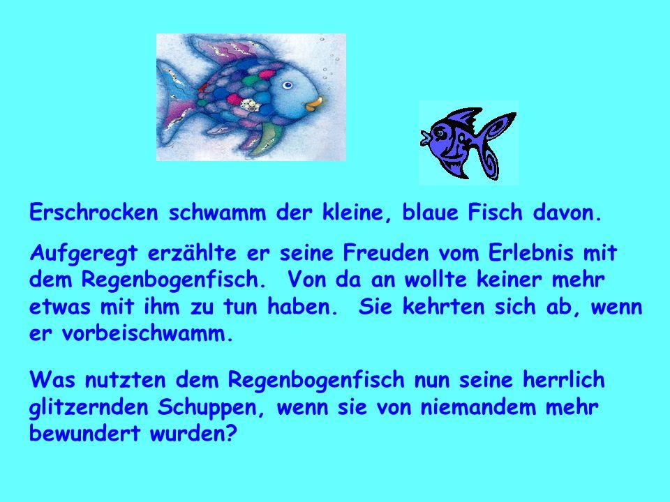 Erschrocken schwamm der kleine, blaue Fisch davon. Aufgeregt erzählte er seine Freuden vom Erlebnis mit dem Regenbogenfisch. Von da an wollte keiner m