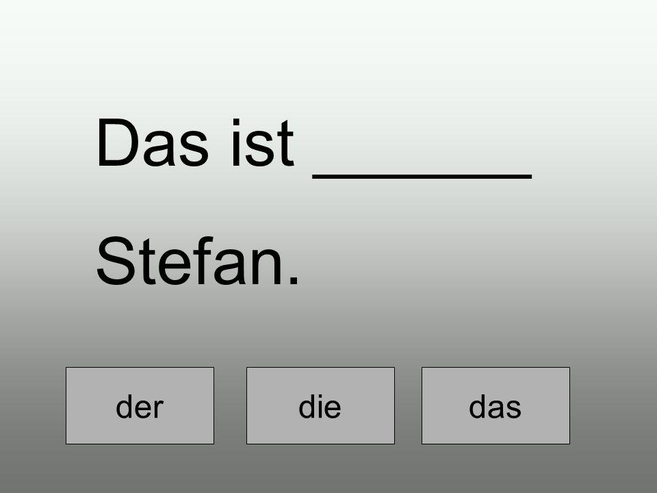 der diedas Das ist ______ Stefan.