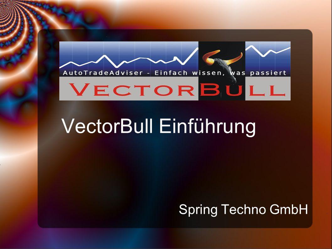 VectorBull Einführung Spring Techno GmbH