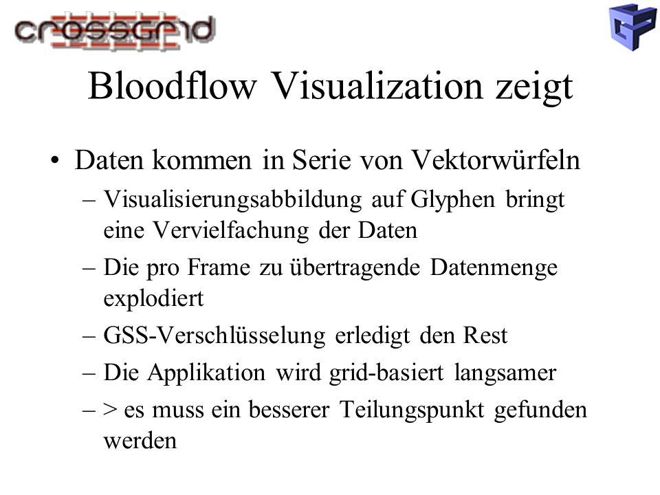Bloodflow Visualization zeigt Daten kommen in Serie von Vektorwürfeln –Visualisierungsabbildung auf Glyphen bringt eine Vervielfachung der Daten –Die pro Frame zu übertragende Datenmenge explodiert –GSS-Verschlüsselung erledigt den Rest –Die Applikation wird grid-basiert langsamer –> es muss ein besserer Teilungspunkt gefunden werden