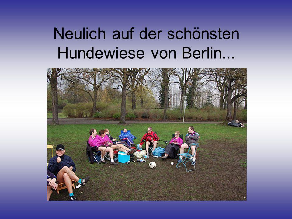 Neulich auf der schönsten Hundewiese von Berlin...