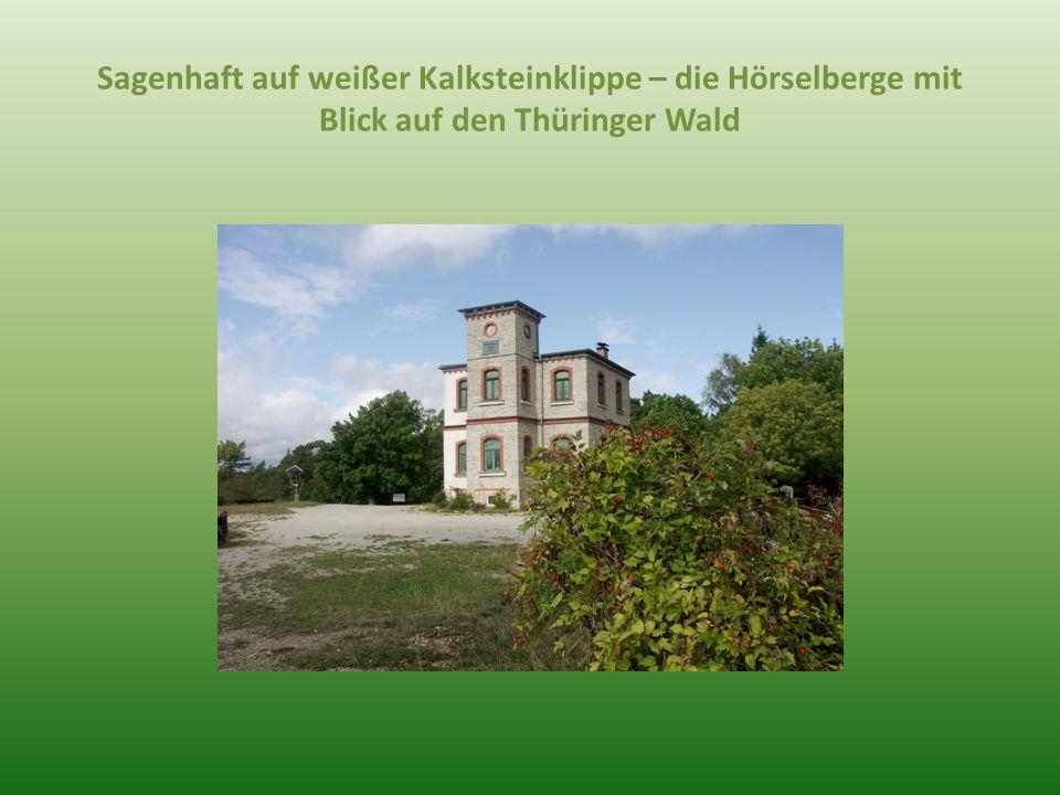 Sagenhaft auf weißer Kalksteinklippe – die Hörselberge mit Blick auf den Thüringer Wald