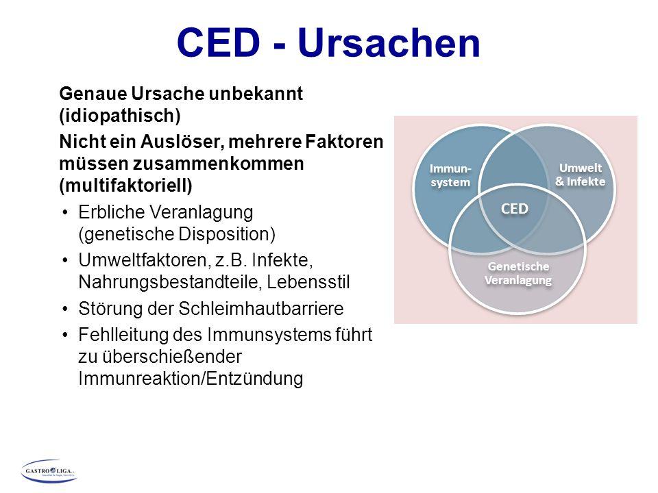 CED - Ursachen Genaue Ursache unbekannt (idiopathisch) Nicht ein Auslöser, mehrere Faktoren müssen zusammenkommen (multifaktoriell) Erbliche Veranlagu