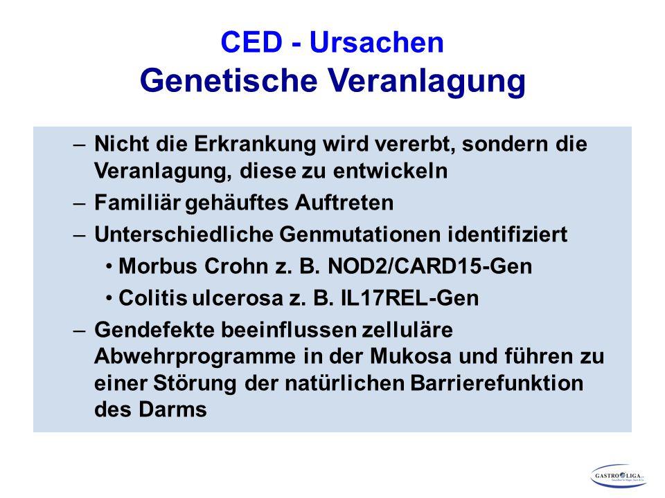 CED - Ursachen Genetische Veranlagung –Nicht die Erkrankung wird vererbt, sondern die Veranlagung, diese zu entwickeln –Familiär gehäuftes Auftreten –Unterschiedliche Genmutationen identifiziert Morbus Crohn z.