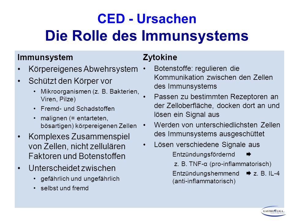 CED - Ursachen Die Rolle des Immunsystems Immunsystem Körpereigenes Abwehrsystem Schützt den Körper vor Mikroorganismen (z. B. Bakterien, Viren, Pilze