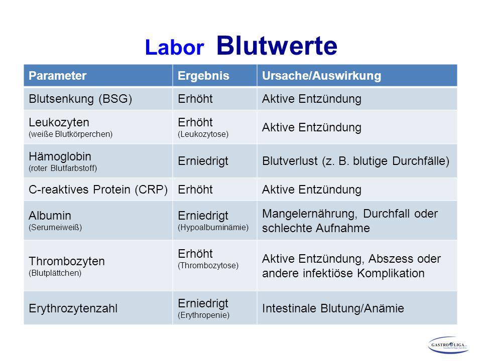 Labor Blutwerte ParameterErgebnisUrsache/Auswirkung Blutsenkung (BSG)ErhöhtAktive Entzündung Leukozyten (weiße Blutkörperchen) Erhöht (Leukozytose) Ak