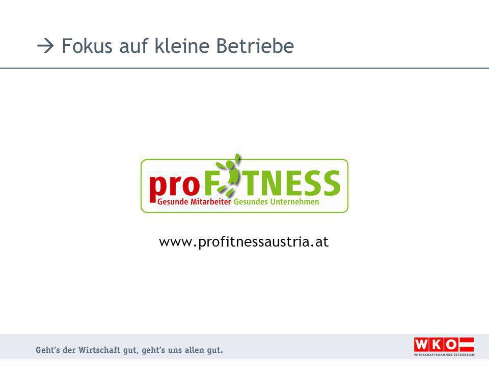  Fokus auf kleine Betriebe www.profitnessaustria.at
