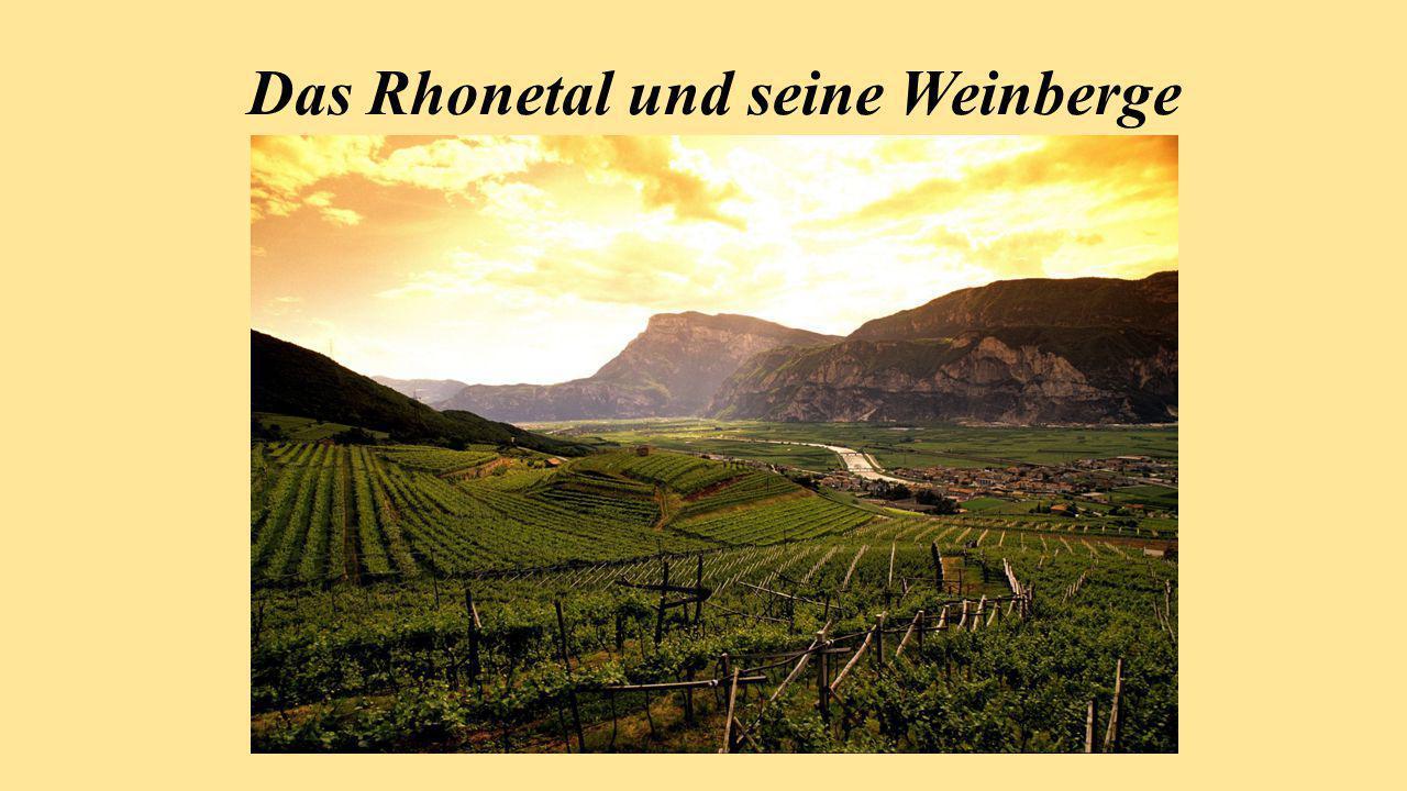 Das Rhonetal und seine Weinberge