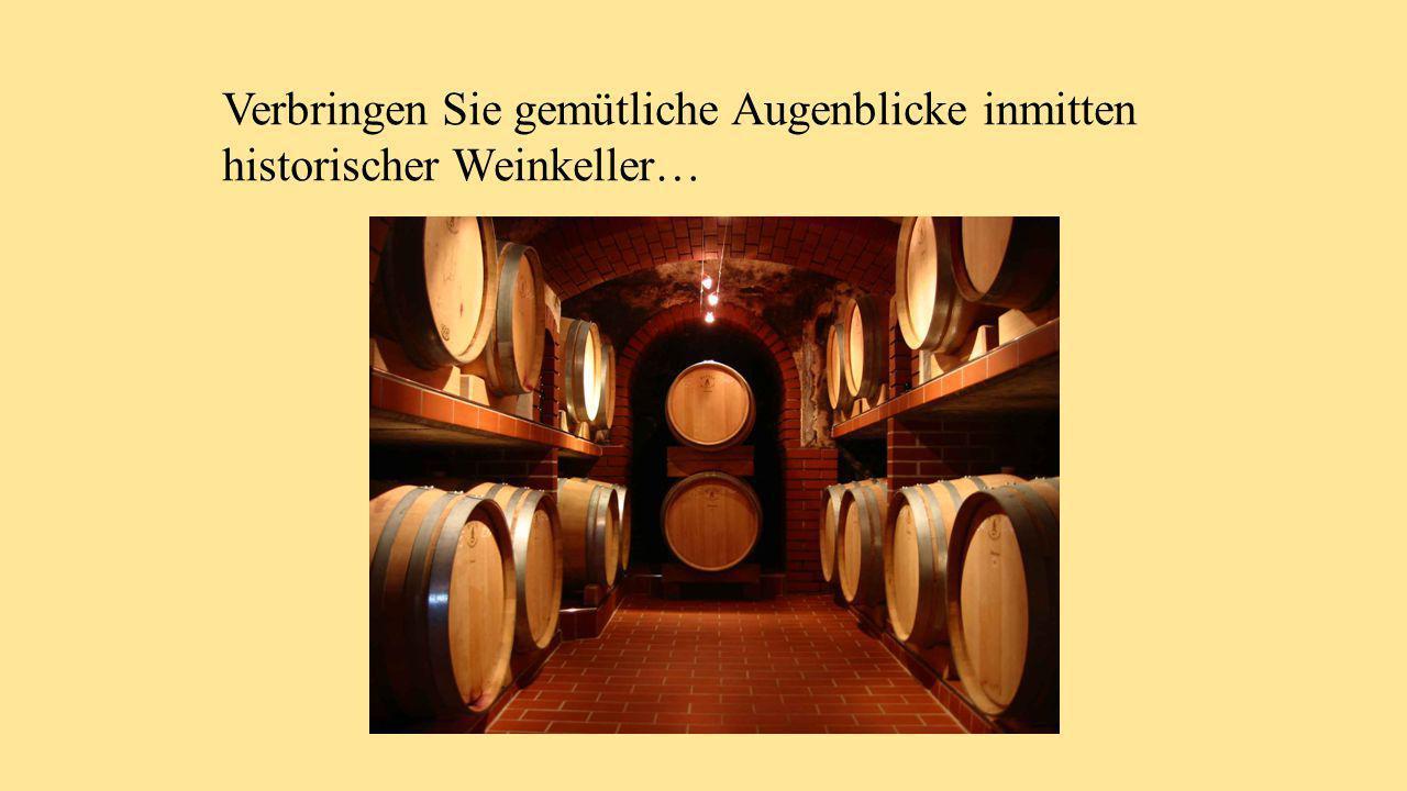 Verbringen Sie gemütliche Augenblicke inmitten historischer Weinkeller…