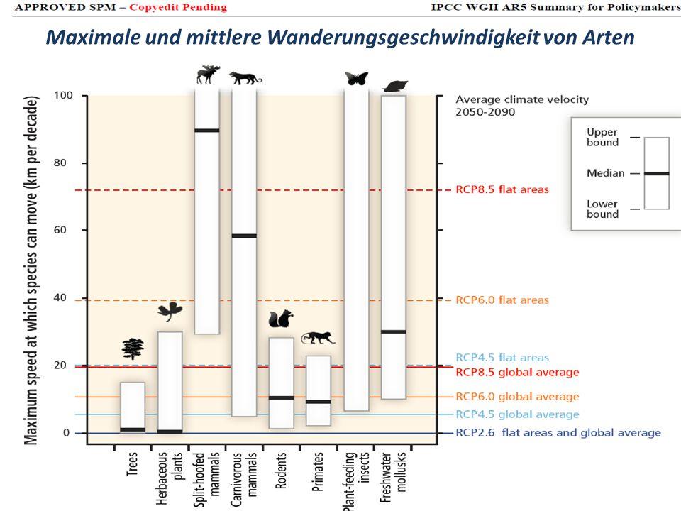 Maximale und mittlere Wanderungsgeschwindigkeit von Arten