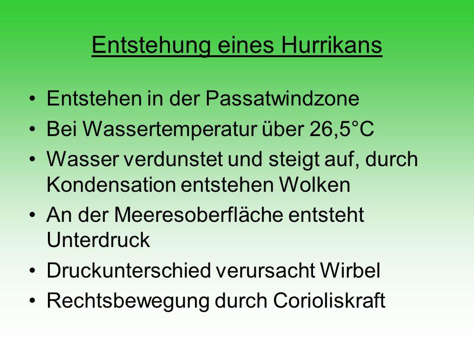 Entstehung eines Hurrikans Entstehen in der Passatwindzone Bei Wassertemperatur über 26,5°C Wasser verdunstet und steigt auf, durch Kondensation entst