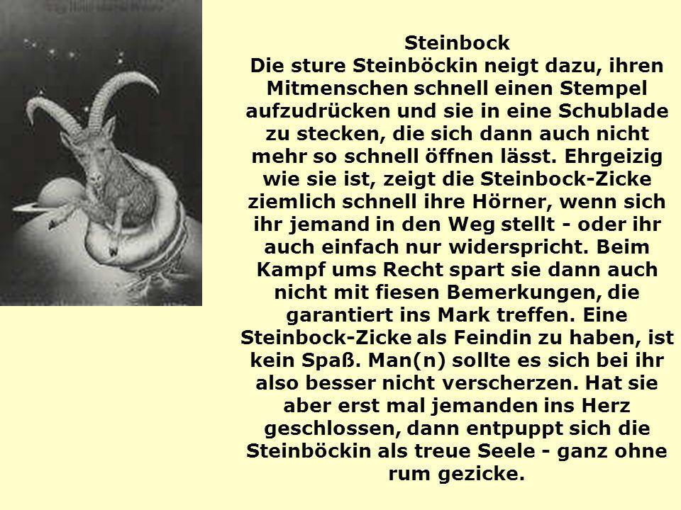 Steinbock Die sture Steinböckin neigt dazu, ihren Mitmenschen schnell einen Stempel aufzudrücken und sie in eine Schublade zu stecken, die sich dann a