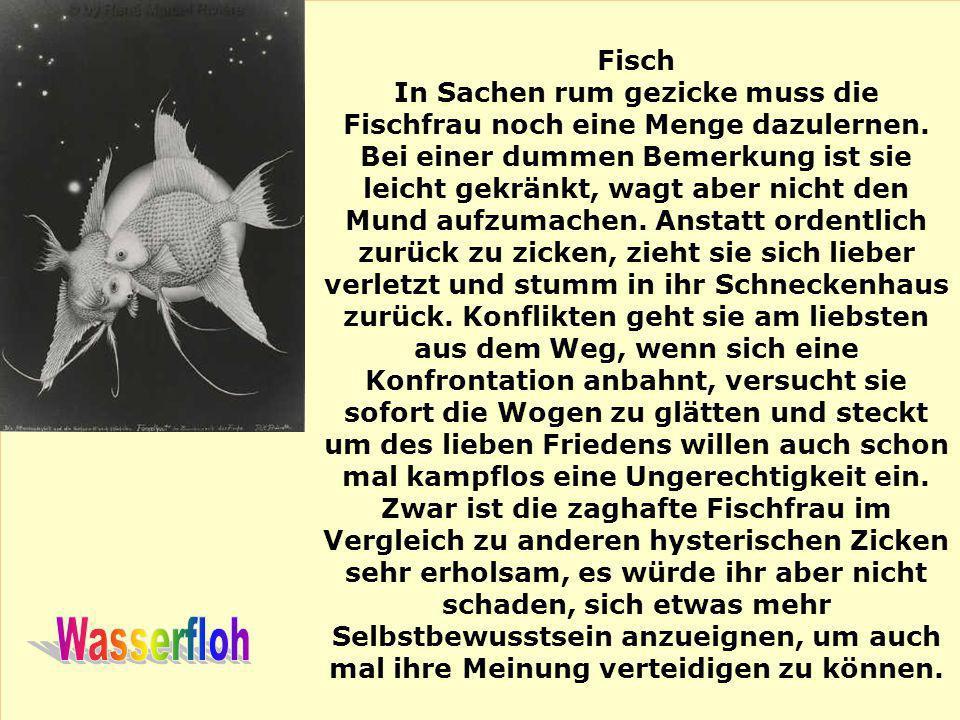 Fisch In Sachen rum gezicke muss die Fischfrau noch eine Menge dazulernen. Bei einer dummen Bemerkung ist sie leicht gekränkt, wagt aber nicht den Mun