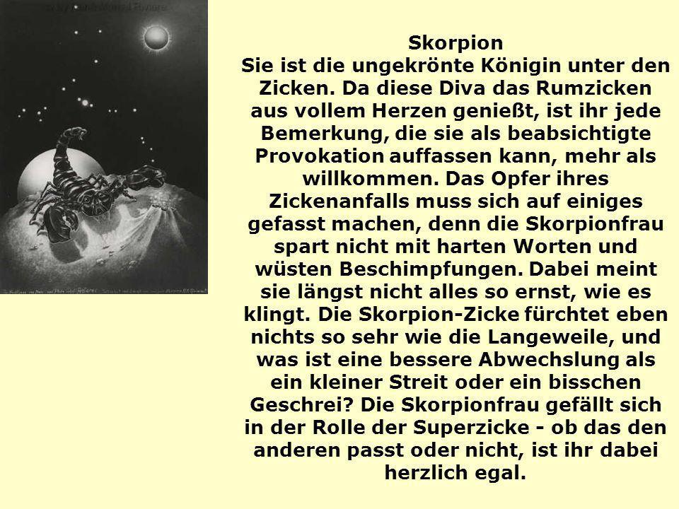 Skorpion Sie ist die ungekrönte Königin unter den Zicken. Da diese Diva das Rumzicken aus vollem Herzen genießt, ist ihr jede Bemerkung, die sie als b