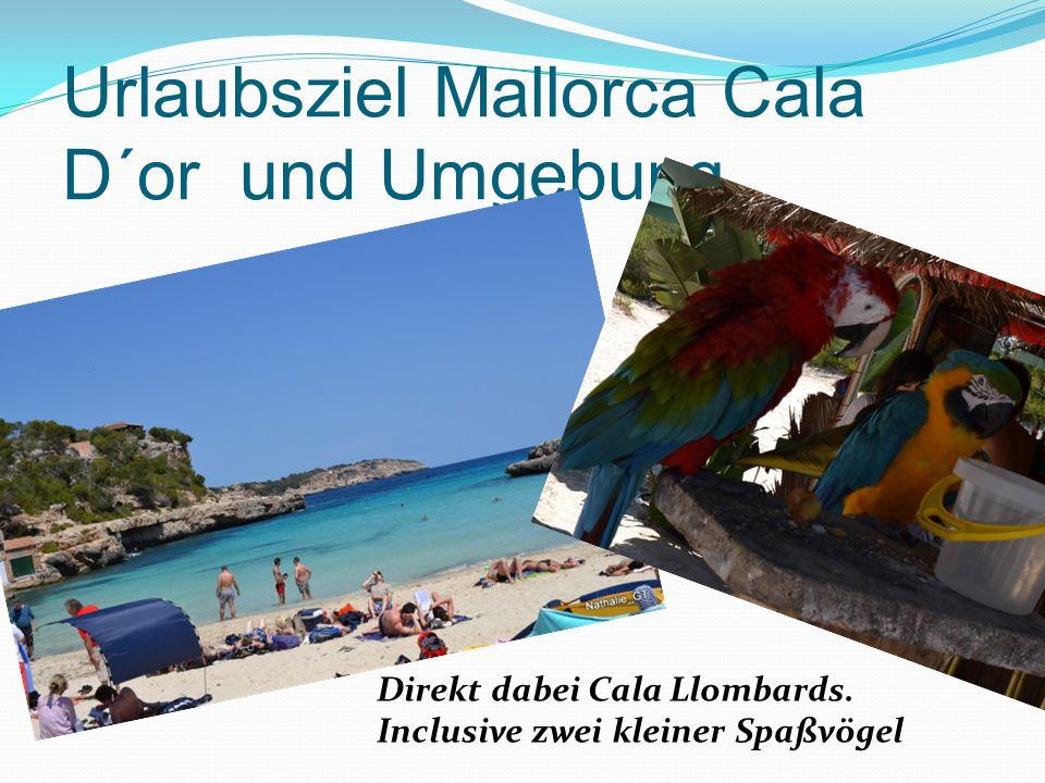 Urlaubsziel Mallorca Cala D´or und Umgebung Direkt dabei Cala Llombards. Inclusive zwei kleiner Spaßvögel