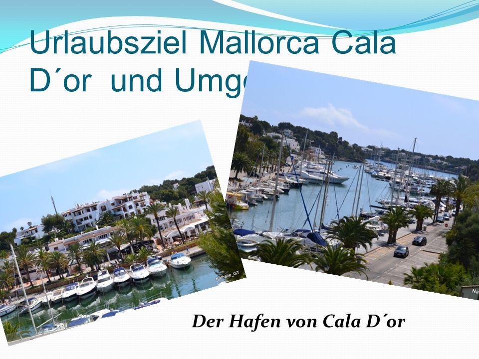 Urlaubsziel Mallorca Cala D´or und Umgebung Der Hafen von Cala D´or