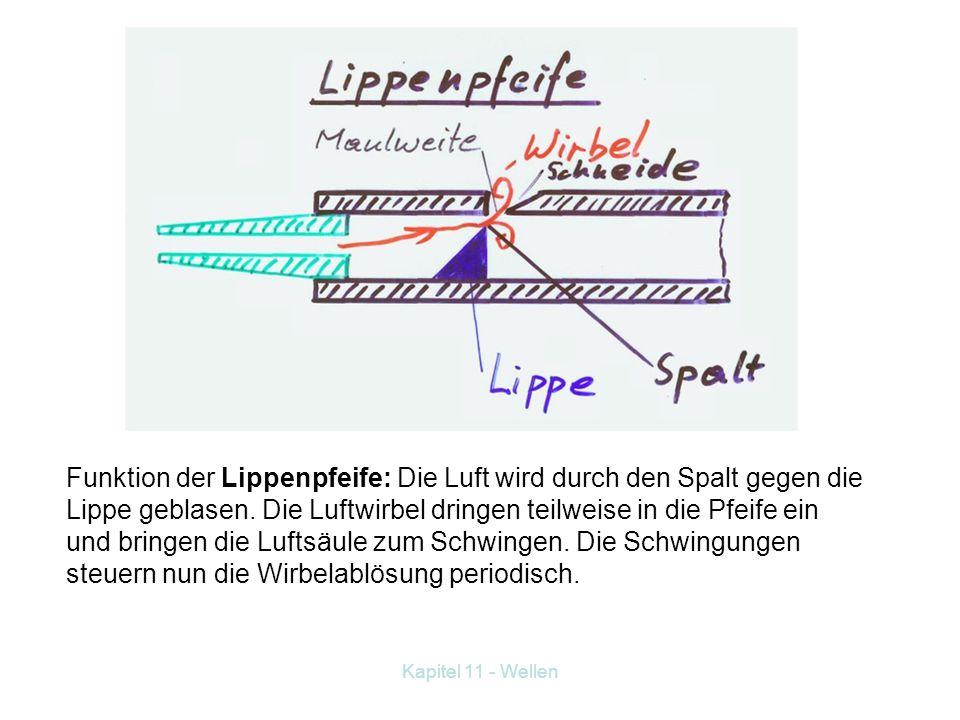 Kapitel 11 - Wellen Gedeckte und offene Pfeifen Frequenz bei gedeckter Pfeife: Frequenz bei offener Pfeife: Funktion der Zungenpfeife: Die Zunge schwi