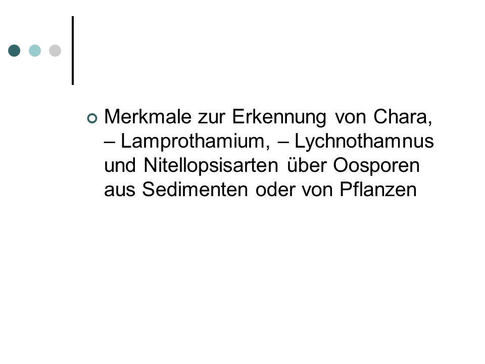 Das methodische Vorgehen zur Erreichung der Ergebnisse ist genau so wie im Heft 23 der Rostocker Meeresbiologischen Beiträge Seite 40 bis 42 beschrieben