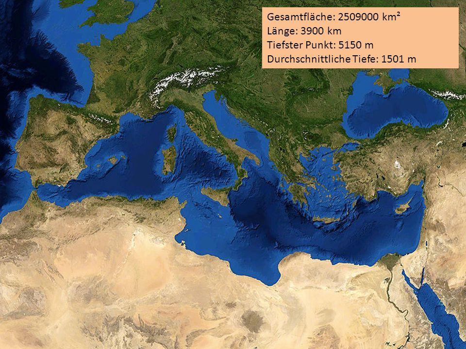 Gesamtfläche: 2509000 km² Länge: 3900 km Tiefster Punkt: 5150 m Durchschnittliche Tiefe: 1501 m