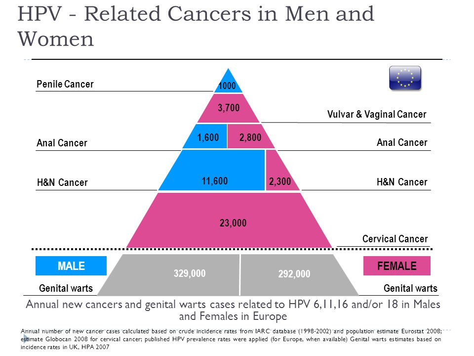 Annual number of new cancer cases calculated based on crude incidence rates from IARC database (1998-2002) and population estimate Eurostat 2008; estimate Globocan 2008 for cervical cancer; published HPV prevalence rates were applied (for Europe, when available) Genital warts estimates based on incidence rates in UK, HPA 2007 Cervical Cancer H&N Cancer Anal Cancer 23,000 Vulvar & Vaginal Cancer 3,700 1000 Penile Cancer H&N Cancer Anal Cancer 329,000 292,000 Genital warts MALEFEMALE Annual new cancers and genital warts cases related to HPV 6,11,16 and/or 18 in Males and Females in Europe 2,300 2,800 1,600 11,600 HPV - Related Cancers in Men and Women