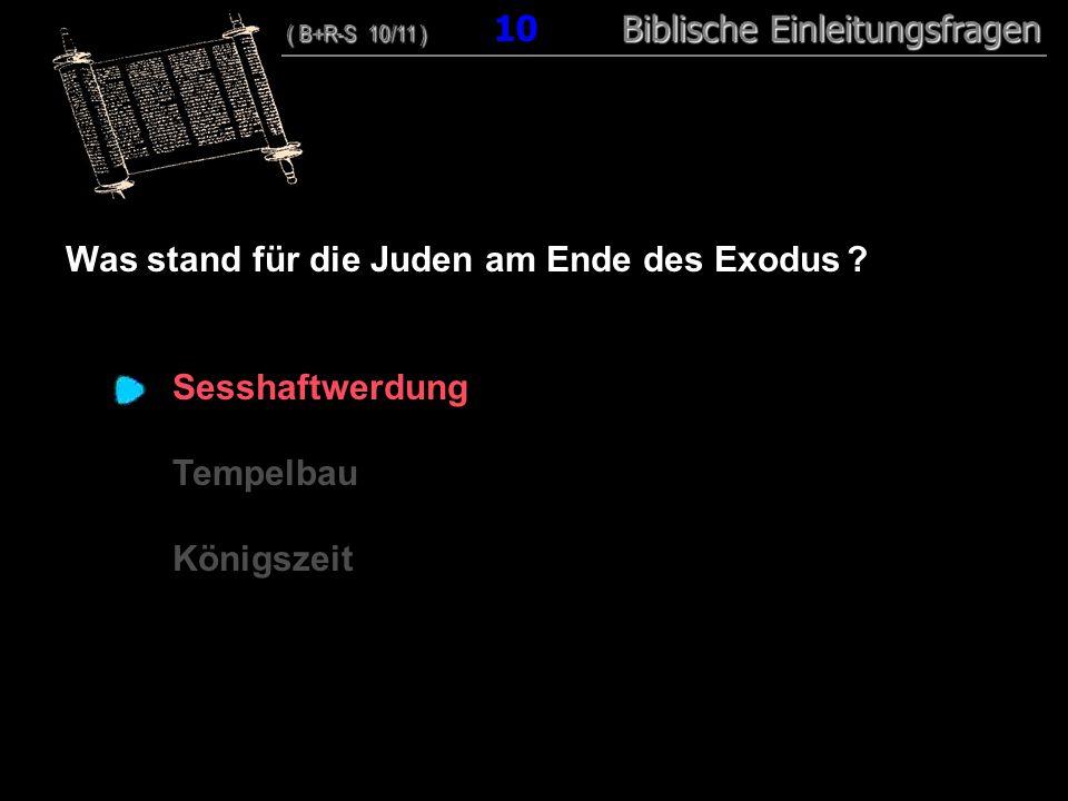 10 Was stand für die Juden am Ende des Exodus ? Sesshaftwerdung Tempelbau Königszeit ( B+R-S 10/11 ) Biblische Einleitungsfragen ( B+R-S 10/11 ) 10 Bi