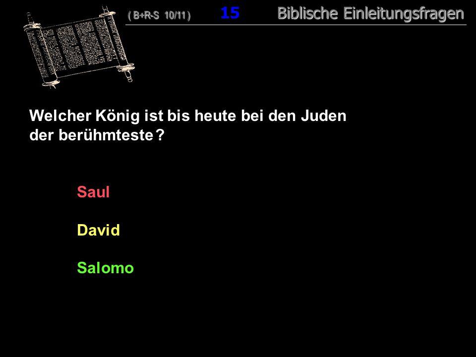 15 Welcher König ist bis heute bei den Juden der berühmteste ? Saul David Salomo ( B+R-S 10/11 ) Biblische Einleitungsfragen ( B+R-S 10/11 ) 15 Biblis
