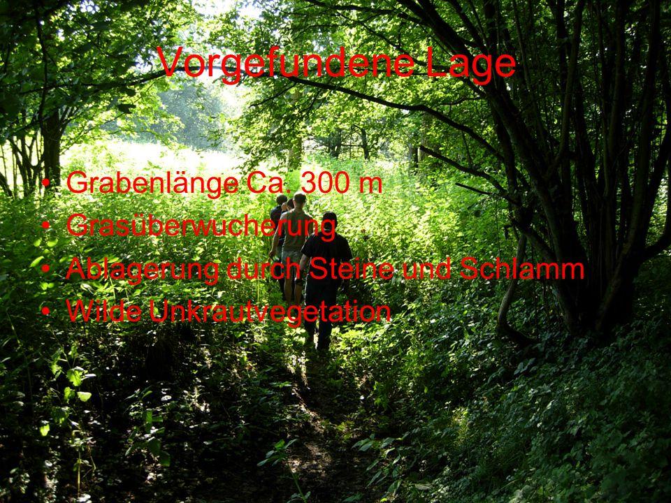 Angestrebte Lage Entfernung der wilden Vegetation (Unkrautbeseitigung) Entfernen von Sumpfgras Verbreiterung bzw.