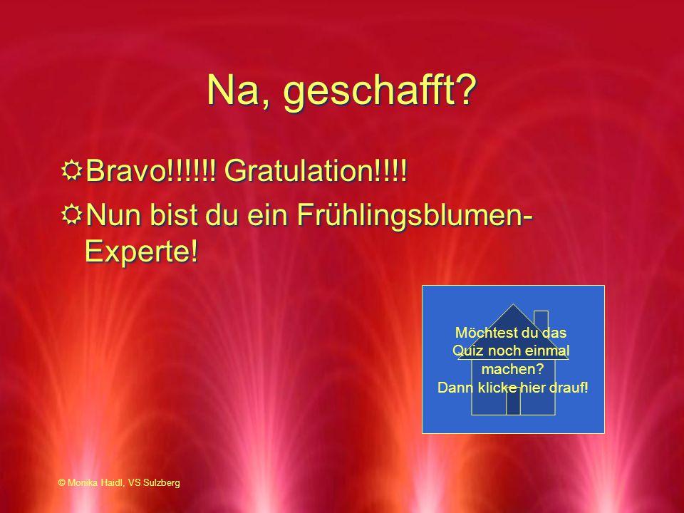 Na, geschafft? RBravo!!!!!! Gratulation!!!! RNun bist du ein Frühlingsblumen- Experte! RBravo!!!!!! Gratulation!!!! RNun bist du ein Frühlingsblumen-