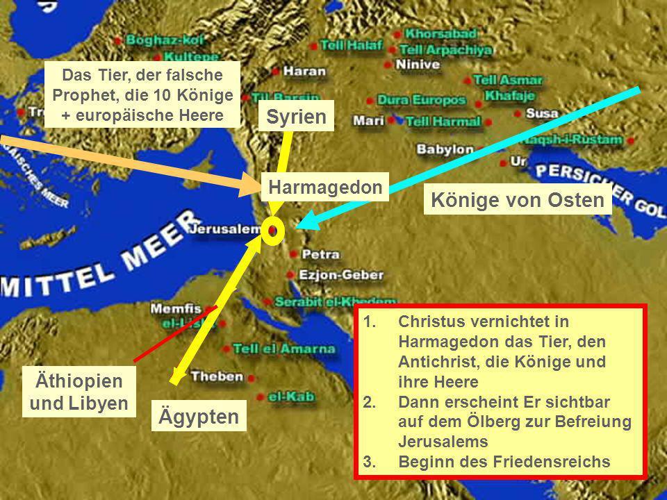 Äthiopien und Libyen Ägypten Syrien Könige von Osten Das Tier, der falsche Prophet, die 10 Könige + europäische Heere Harmagedon 1.Christus vernichtet
