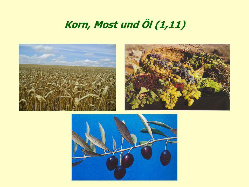 Korn, Most und Öl (1,11)