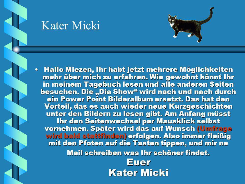 Kater Mickis Bilderalbum