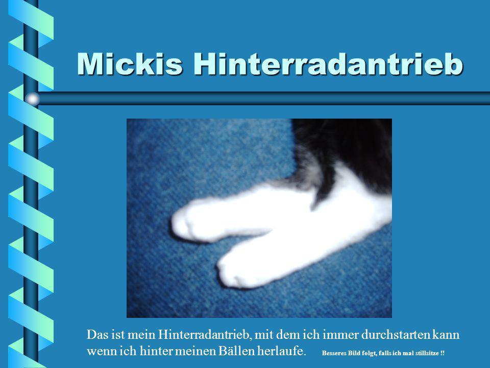Mickis Vorderräder Das ist mein linkes Vorderrad, immer bereit die Enterhaken auszufahren !!