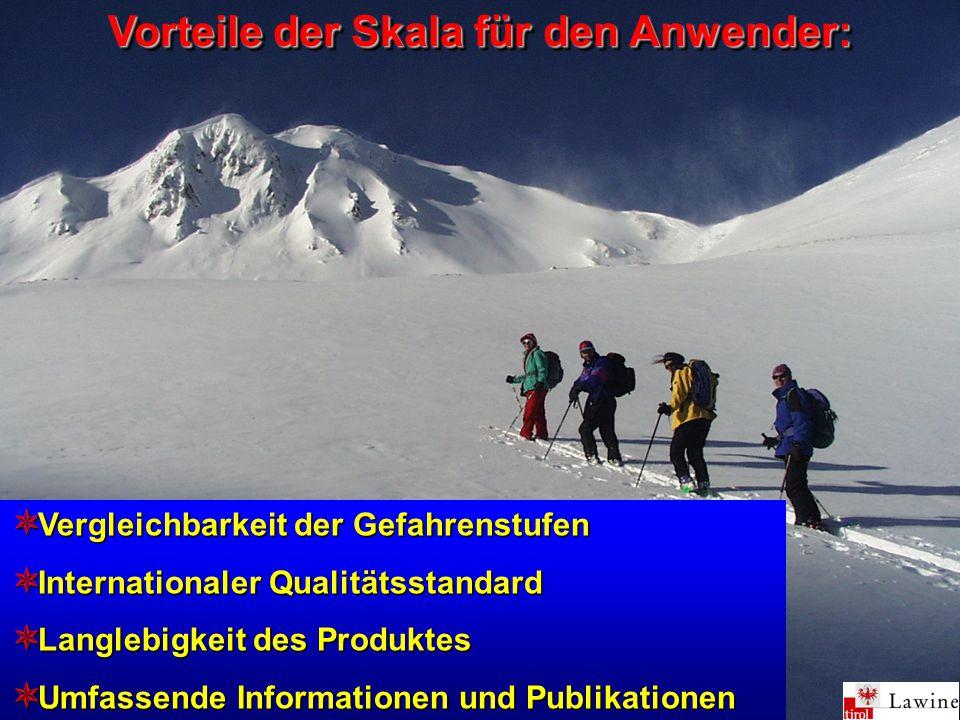 Vorteile der Skala für den Anwender:  Vergleichbarkeit der Gefahrenstufen  Internationaler Qualitätsstandard  Langlebigkeit des Produktes  Umfassende Informationen und Publikationen