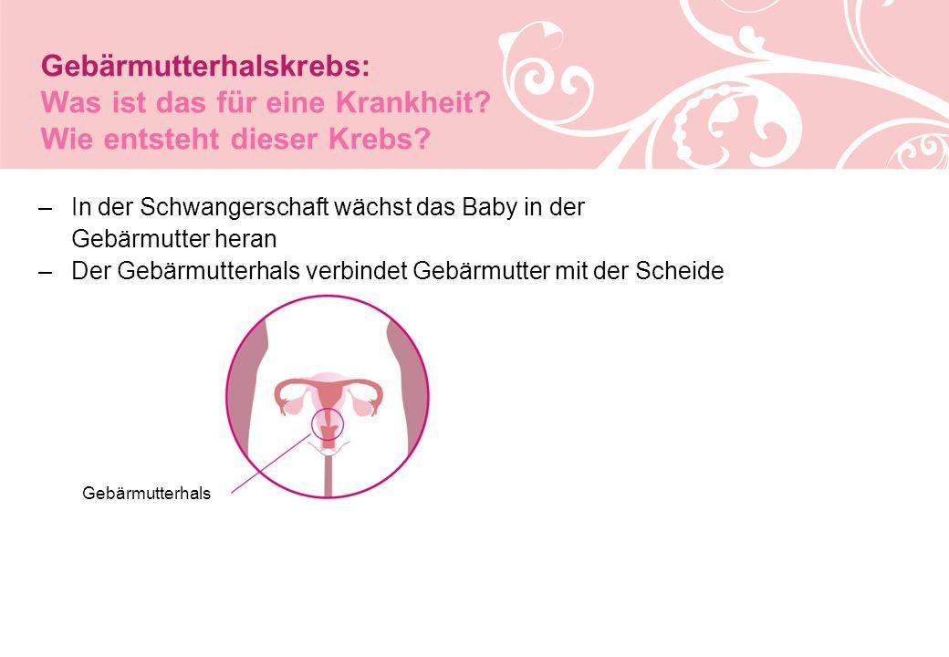–In der Schwangerschaft wächst das Baby in der Gebärmutter heran –Der Gebärmutterhals verbindet Gebärmutter mit der Scheide Gebärmutterhals Gebärmutterhalskrebs: Was ist das für eine Krankheit.