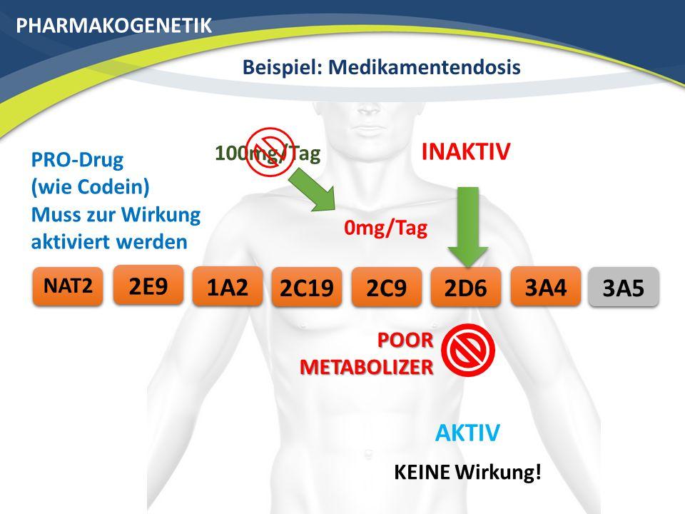 PHARMAKOGENETIK Beispiel: Medikamentendosis 3A42C192E9 NAT2 2C91A2 100mg/Tag ULTRA RAPID METABOLIZER 2D6 AKTIV INAKTIV PRO-Drug (wie Codein) Muss zur Wirkung aktiviert werden 200% Wirkung.