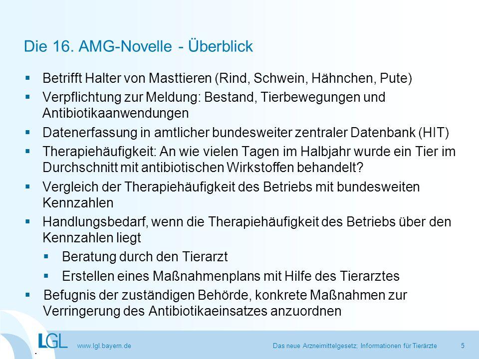 www.lgl.bayern.de Die 16. AMG-Novelle - Überblick  Betrifft Halter von Masttieren (Rind, Schwein, Hähnchen, Pute)  Verpflichtung zur Meldung: Bestan