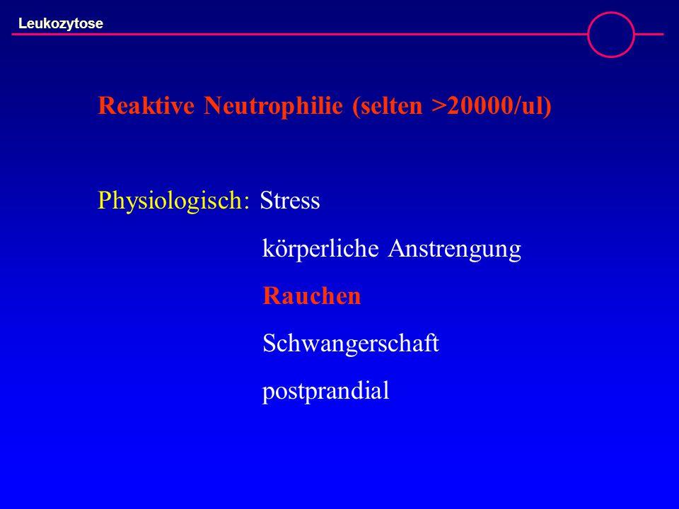 Leukozytose Reaktive Neutrophilie (selten >20000/ul) Physiologisch: Stress körperliche Anstrengung Rauchen Schwangerschaft postprandial