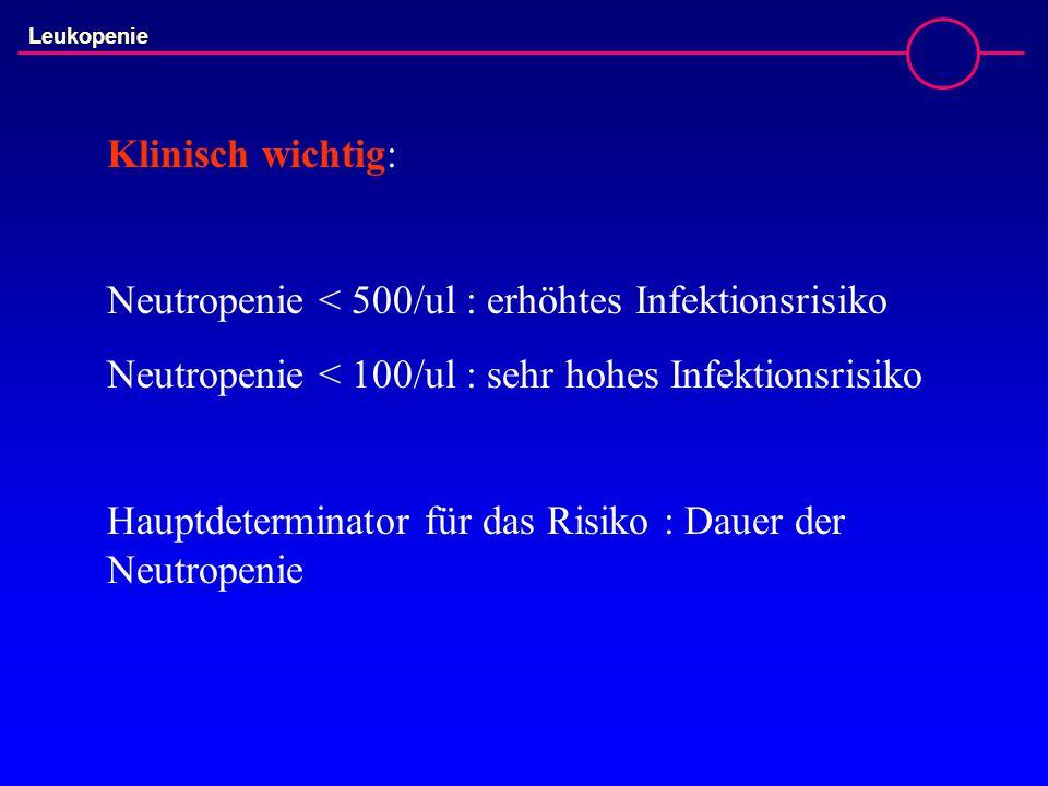 Klinisch wichtig: Neutropenie < 500/ul : erhöhtes Infektionsrisiko Neutropenie < 100/ul : sehr hohes Infektionsrisiko Hauptdeterminator für das Risiko : Dauer der Neutropenie