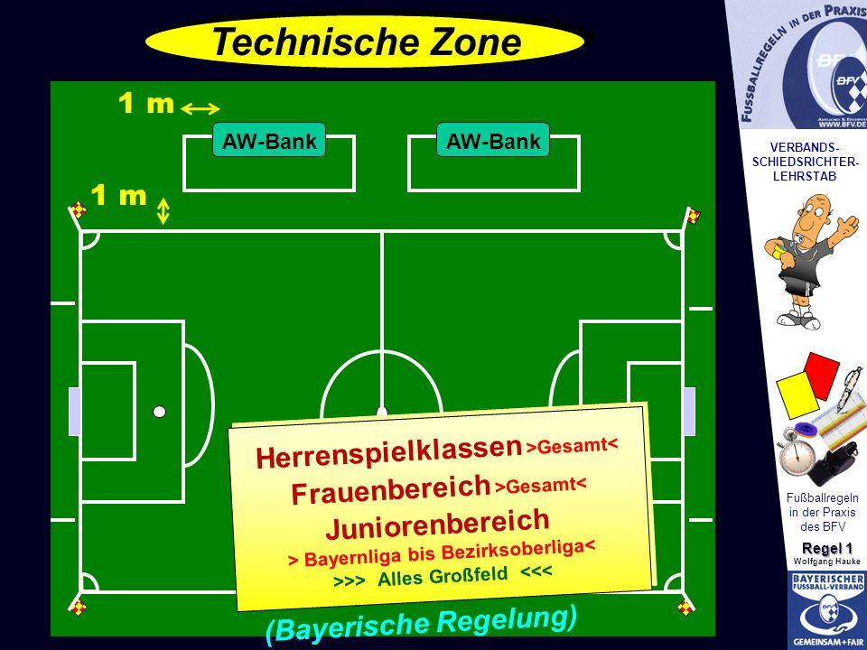 VERBANDS- SCHIEDSRICHTER- LEHRSTAB Fußballregeln in der Praxis des BFV Regel 1 Wolfgang Hauke Technische Zone 1 m Herrenspielklassen >Gesamt< Frauenbe