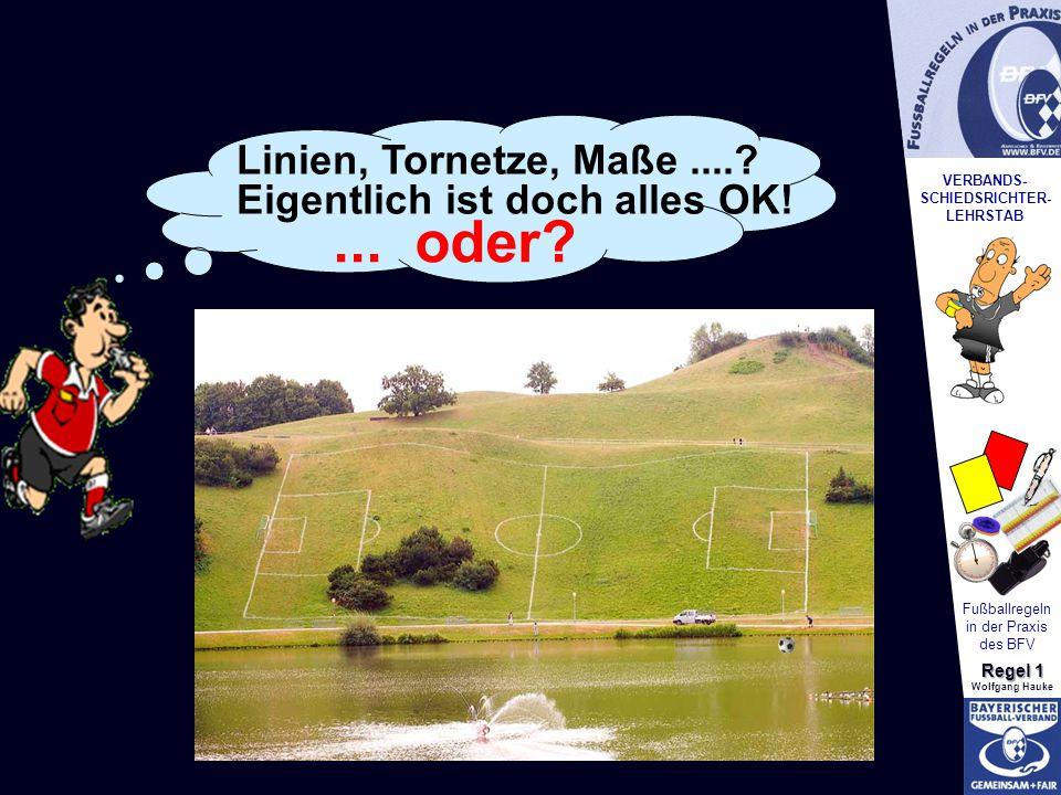 VERBANDS- SCHIEDSRICHTER- LEHRSTAB Fußballregeln in der Praxis des BFV Regel 1 Wolfgang Hauke Linien, Tornetze, Maße....? Eigentlich ist doch alles OK
