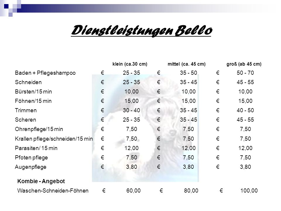 Dienstleistungen Bello klein (ca.30 cm)mittel (ca.