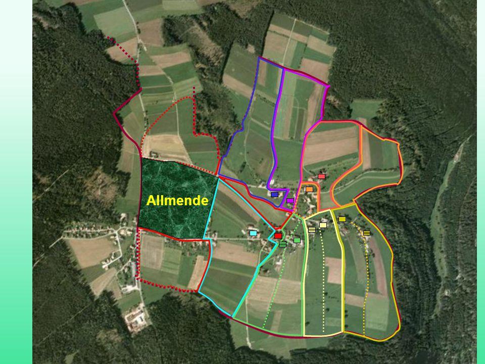 Ettmannsweiler Flursystem ` Allmende