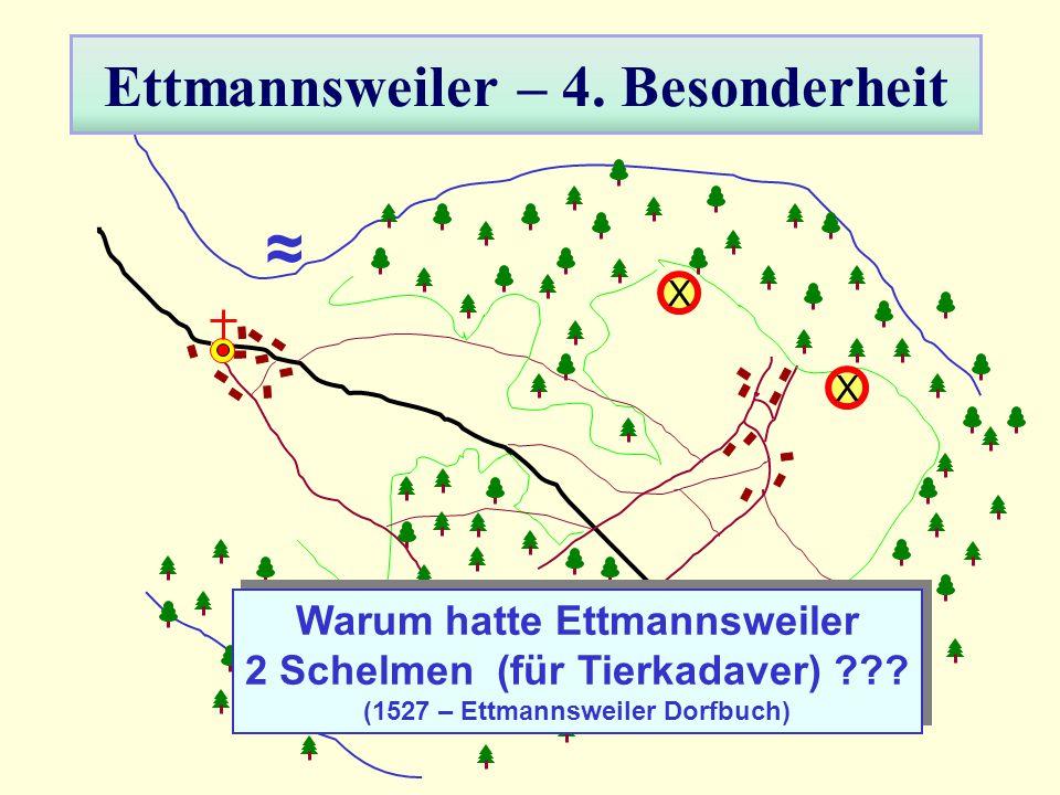 Ettmannsweiler – 4. Besonderheit ≈ X X Warum hatte Ettmannsweiler 2 Schelmen (für Tierkadaver) ??? (1527 – Ettmannsweiler Dorfbuch) Warum hatte Ettman