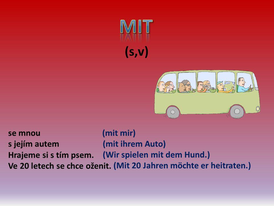(s,v) se mnou s jejím autem Hrajeme si s tím psem. Ve 20 letech se chce oženit. (mit mir) (mit ihrem Auto) (Wir spielen mit dem Hund.) (Mit 20 Jahren
